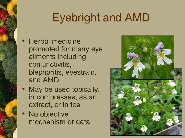 Eyebright and AMD • Herbal medicine • • promoted for many eye ailments including