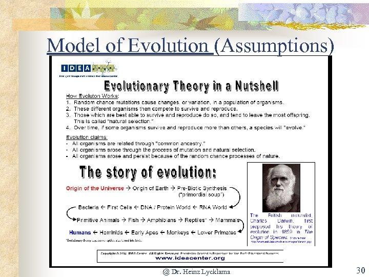 Model of Evolution (Assumptions) @ Dr. Heinz Lycklama 30