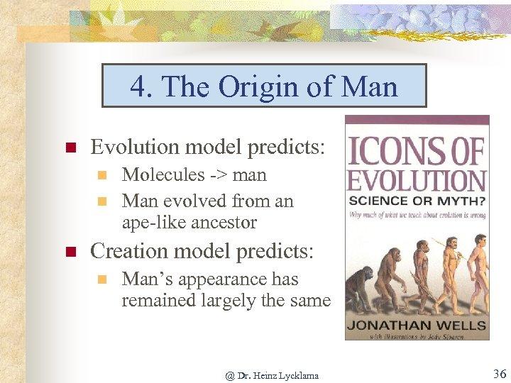 4. The Origin of Man n Evolution model predicts: n n n Molecules ->