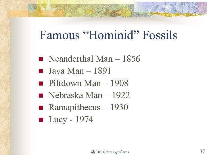 """Famous """"Hominid"""" Fossils n n n Neanderthal Man – 1856 Java Man – 1891"""