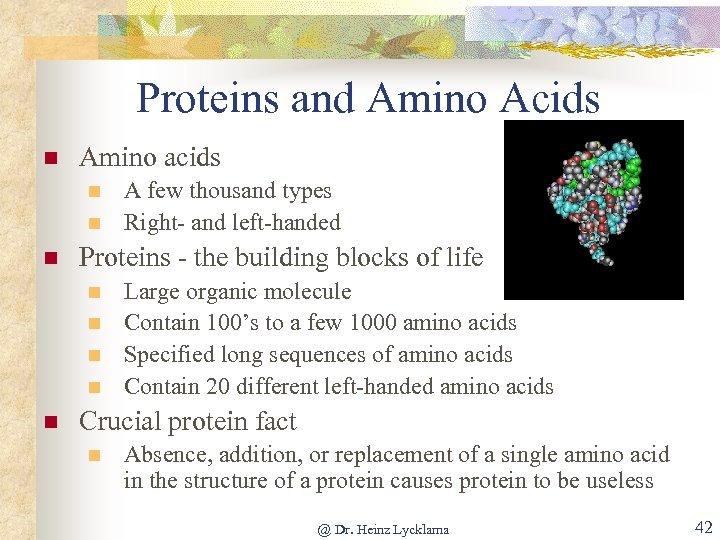 Proteins and Amino Acids n Amino acids n n n Proteins - the building