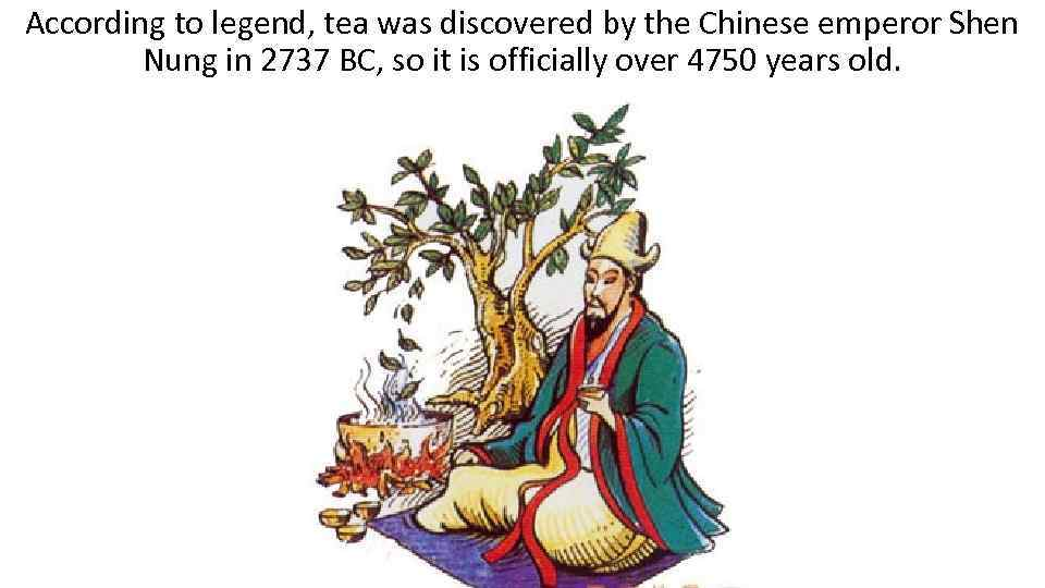 According to legend, tea was discovered by the Chinese emperor Shen Nung in 2737