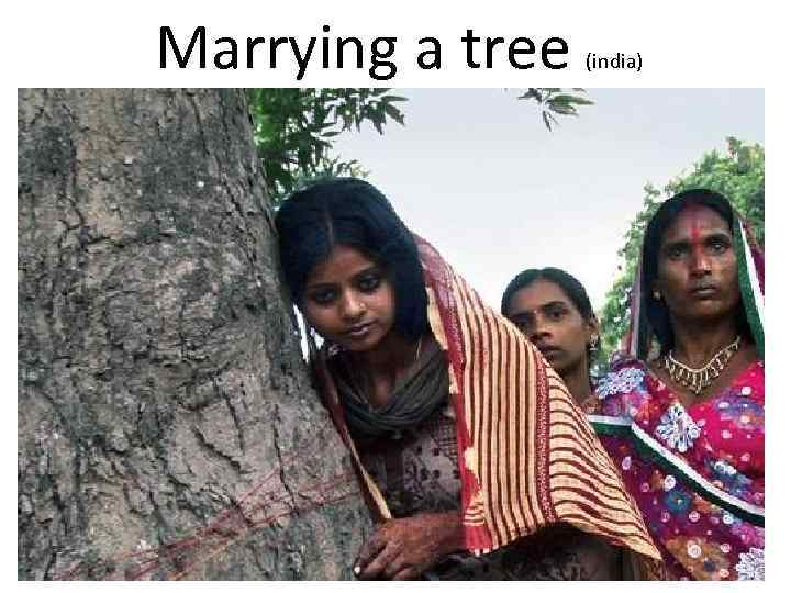 Marrying a tree (india)