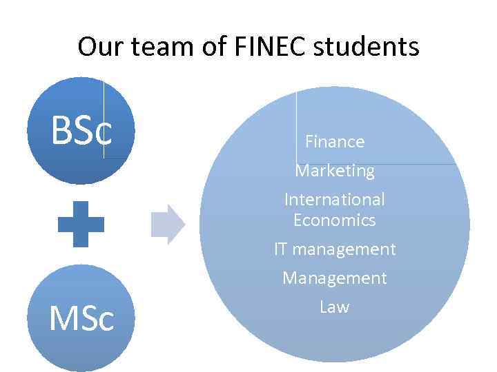 Our team of FINEC students BSc Finance Marketing International Economics IT management MSc Law