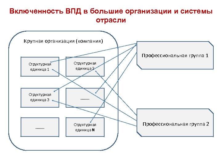 Включенность ВПД в большие организации и системы отрасли Крупная организация (компания) Профессиональная группа 1