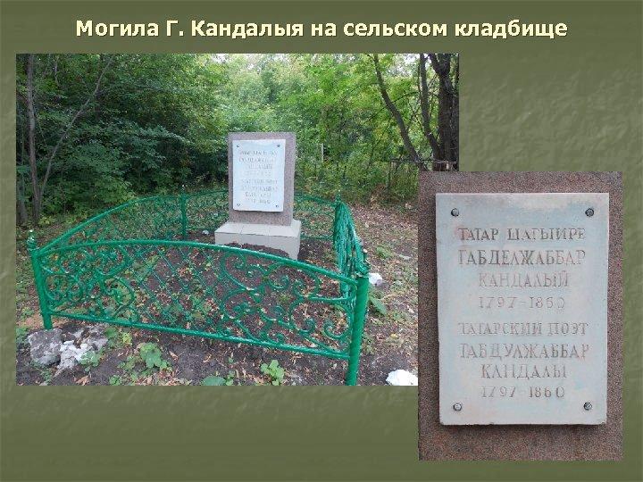 Могила Г. Кандалыя на сельском кладбище