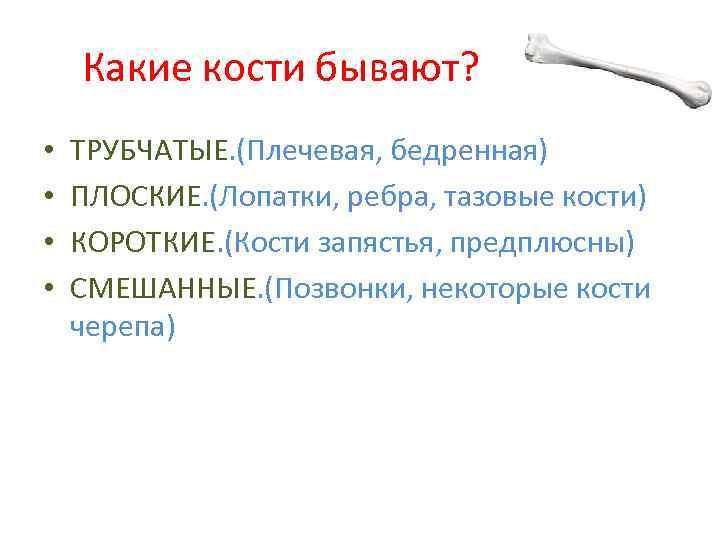 Какие кости бывают? • • ТРУБЧАТЫЕ. (Плечевая, бедренная) ПЛОСКИЕ. (Лопатки, ребра, тазовые кости) КОРОТКИЕ.