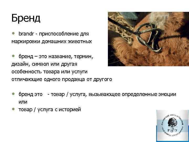 Бренд • brandr приспособление для маркировки домашних животных • бренд – это название, термин,