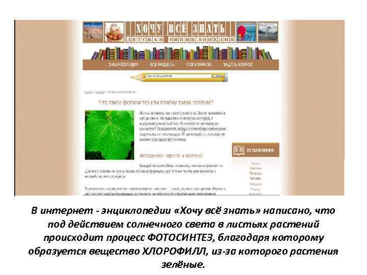 В интернет - энциклопедии «Хочу всё знать» написано, что под действием солнечного света в