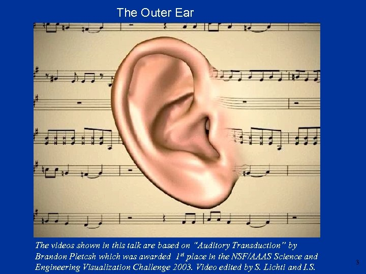 """The Outer Ear The videos shown in this talk are based on """"Auditory Transduction"""""""
