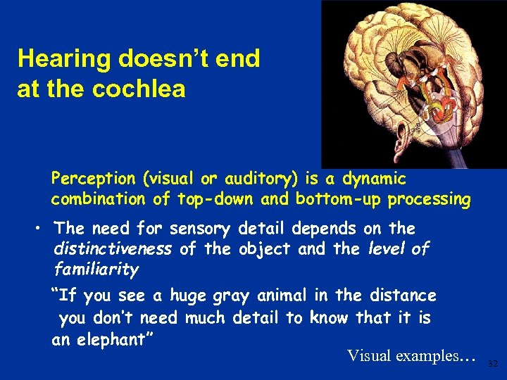 Hearing doesn't end at the cochlea Perception (visual or auditory) is a dynamic combination