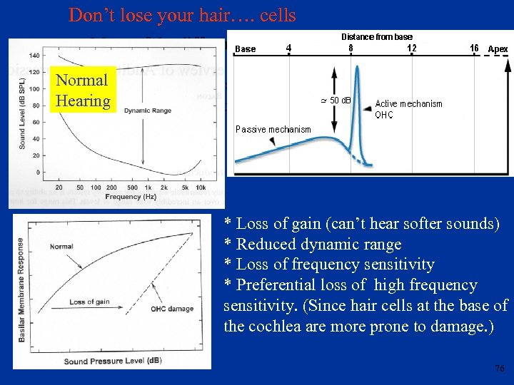 Don't lose your hair…. cells Many of the differences in perception between natural hearing
