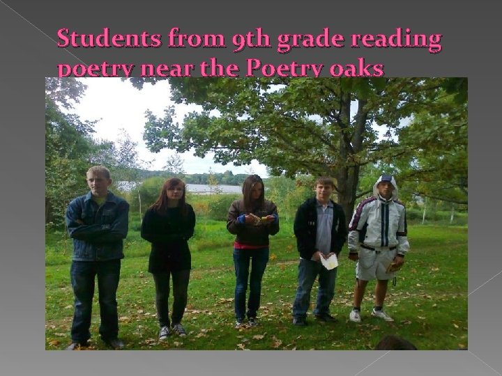 Students from 9 th grade reading poetry near the Poetry oaks