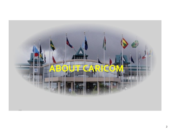 ABOUT CARICOM 3