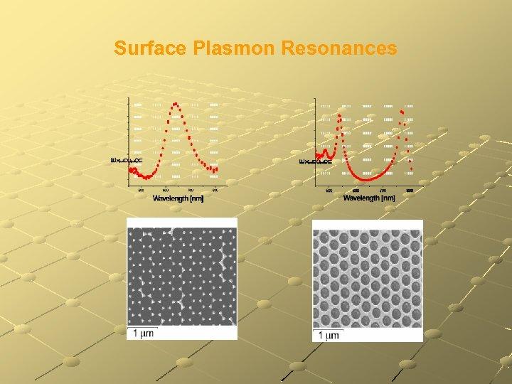 Surface Plasmon Resonances