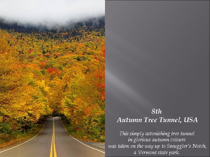 8 th Autumn Tree Tunnel, USA This simply astonishing tree tunnel in glorious autumn