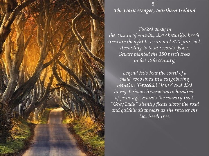 5 th The Dark Hedges, Northern Ireland Tucked away in the county of Antrim,
