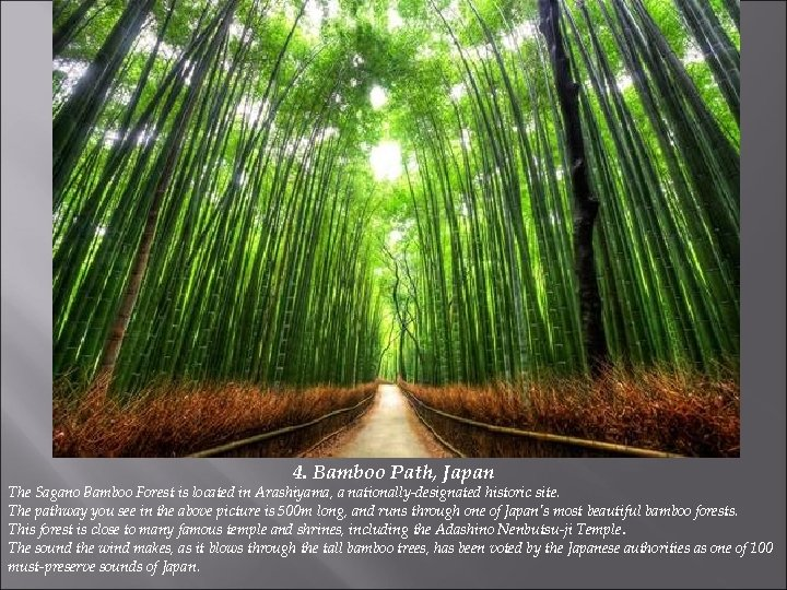 4. Bamboo Path, Japan The Sagano Bamboo Forest is located in Arashiyama, a nationally-designated