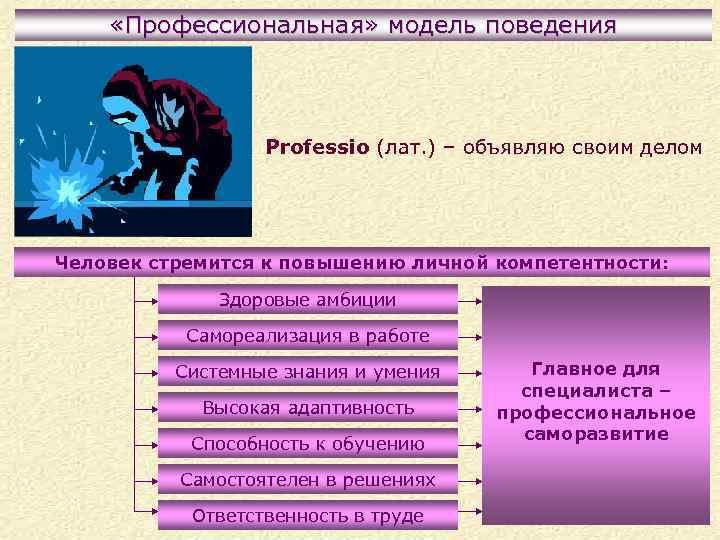 «Профессиональная» модель поведения Professio (лат. ) – объявляю своим делом Человек стремится к