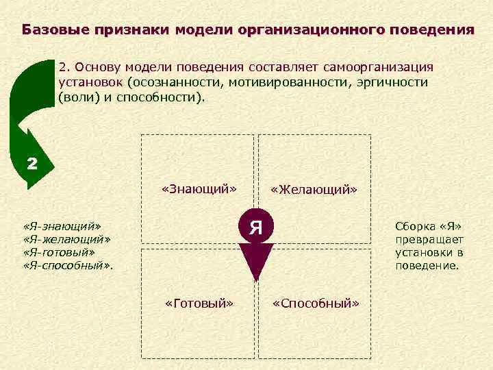 Базовые признаки модели организационного поведения 2. Основу модели поведения составляет самоорганизация установок (осознанности, мотивированности,