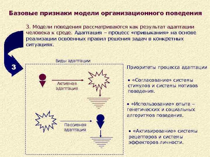 Базовые признаки модели организационного поведения 3. Модели поведения рассматриваются как результат адаптации человека к