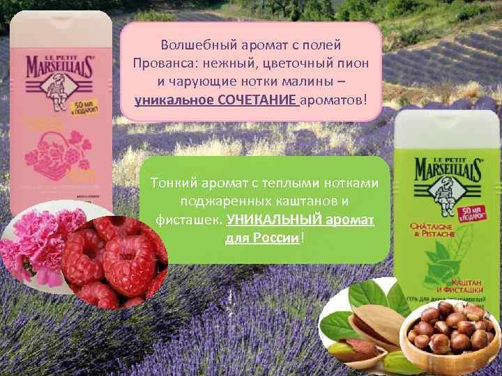 Волшебный аромат с полей Прованса: нежный, цветочный пион и чарующие нотки малины – уникальное