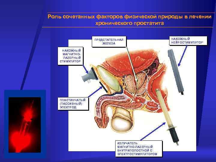Лечение простатита по земной льняное масло и простатит