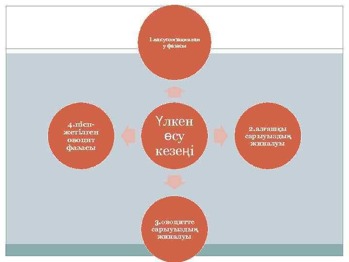 1. вакуолизациялан у фазасы 4. піспжетілген овоцит фазасы Үлкен өсу кезеңі 3. овоцитте сарыуыздың