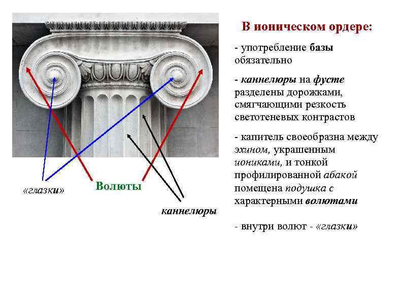 В ионическом ордере: - употребление базы обязательно - каннелюры на фусте разделены дорожками, смягчающими