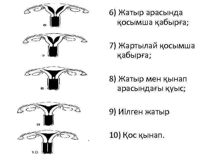 6) Жатыр арасында қосымша қабырға; 7) Жартылай қосымша қабырға; 8) Жатыр мен қынап арасындағы
