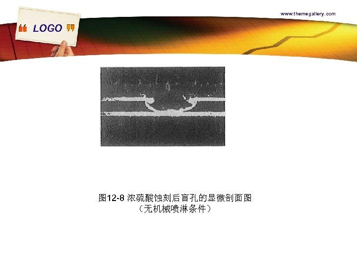 www. themegallery. com LOGO 图 12 -8 浓硫酸蚀刻后盲孔的显微剖面图 (无机械喷淋条件)