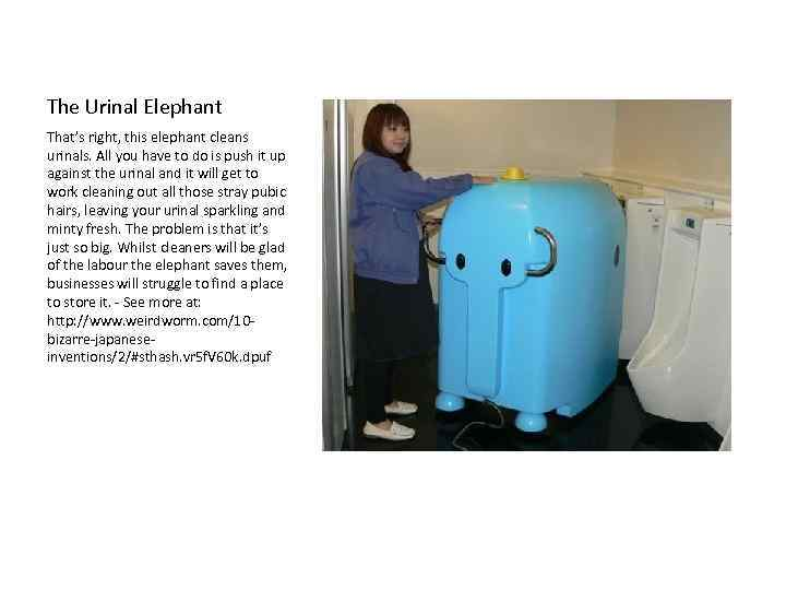 The Urinal Elephant That's right, this elephant cleans urinals. All you have to do
