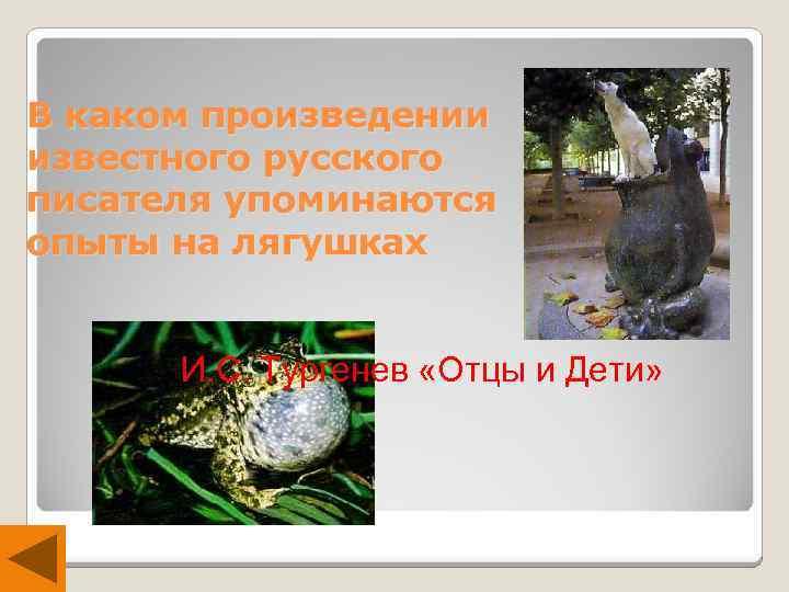 В каком произведении известного русского писателя упоминаются опыты на лягушках И. С. Тургенев «Отцы