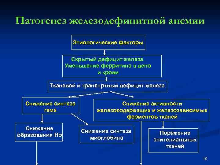 Патогенез железодефицитной анемии Этиологические факторы Скрытый дефицит железа. Уменьшение ферритина в депо и крови