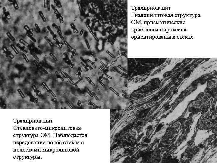 Трахириодацит Гиалопилитовая структура ОМ, призматические кристаллы пироксена ориентированы в стекле Трахириодацит Стекловато микролитовая структура