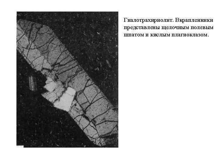 Гиалотрахириолит. Вкрапленники представлены щелочным полевым шпатом и кислым плагиоклазом.