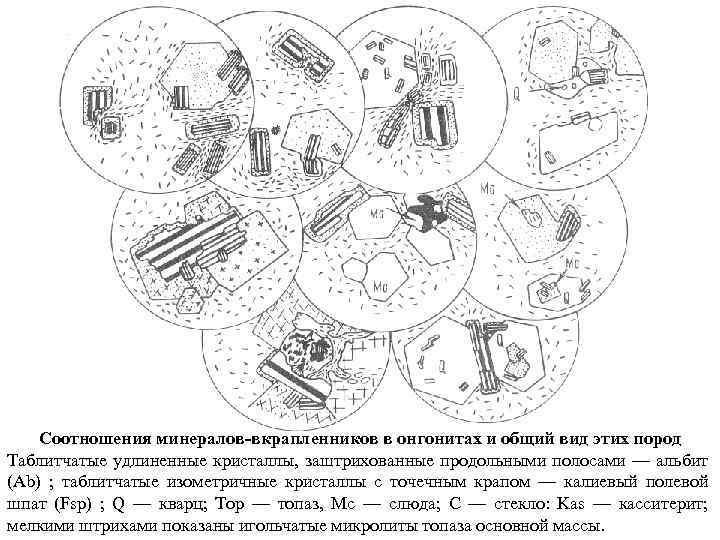 Соотношения минералов-вкрапленников в онгонитах и общий вид этих пород Таблитчатые удлиненные кристаллы, заштрихованные продольными
