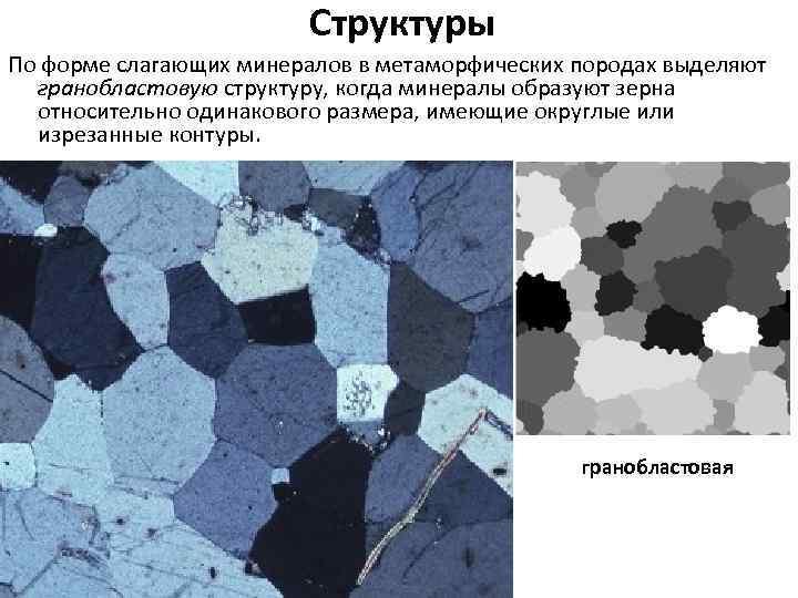 Структуры По форме слагающих минералов в метаморфических породах выделяют гранобластовую структуру, когда минералы образуют