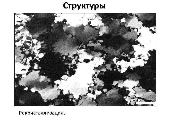 Структуры Рекристаллизация.