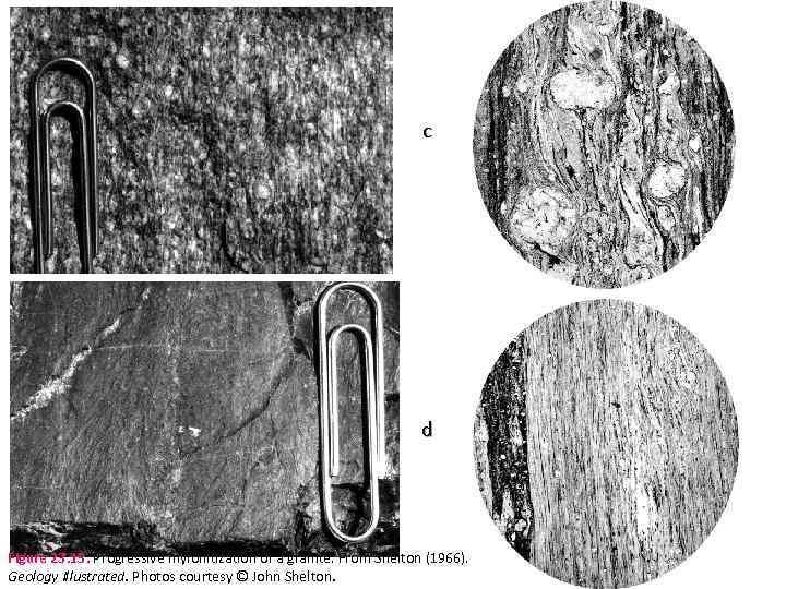 c d Figure 23. 15. Progressive mylonitization of a granite. From Shelton (1966). Geology