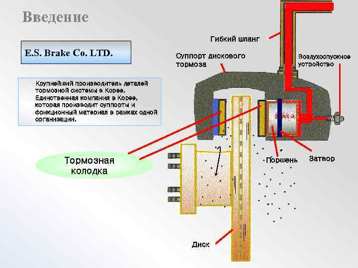 Введение Гибкий шланг E. S. Brake Co. LTD. Суппорт дискового тормоза Воздухоспускное устройство Крупнейший