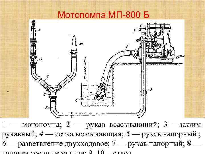 Мотопомпа МП-800 Б - 1 — мотопомпа; 2 — рукав всасывающий; 3 —зажим рукавный;