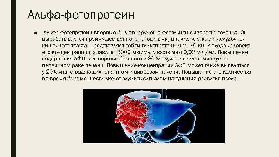 Анализ альфафетопротеин на такое крови что крови анализы курил покажут мочи траву и