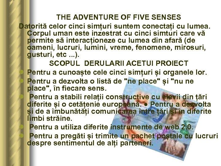 THE ADVENTURE OF FIVE SENSES Datorită celor cinci simțuri suntem conectați cu lumea. Corpul