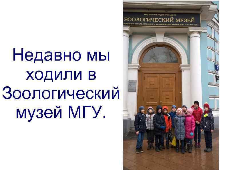 Недавно мы ходили в Зоологический музей МГУ.