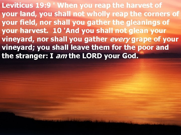 Leviticus 19: 9 ' When you reap the harvest of your land, you shall