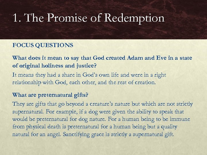 1. The Promise of Redemption FOCUS QUESTIONS What does it mean to say that