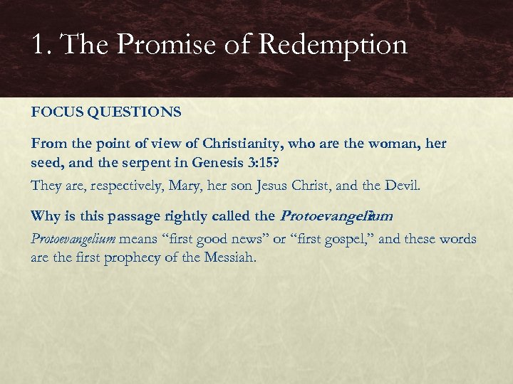 1. The Promise of Redemption FOCUS QUESTIONS From the point of view of Christianity,