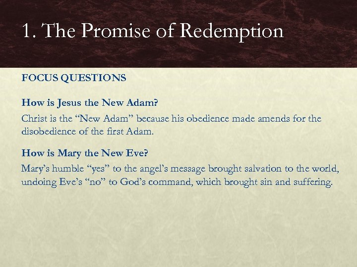 1. The Promise of Redemption FOCUS QUESTIONS How is Jesus the New Adam? Christ