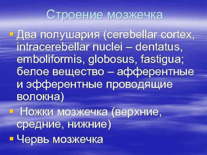 Строение мозжечка § Два полушария (cerebellar cortex, intracerebellar nuclei – dentatus, emboliformis, globosus, fastigua;